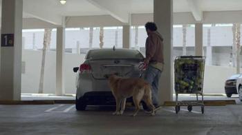 Subaru Impreza TV Spot, 'Make a Dog's Day' Song by Willie Nelson - Thumbnail 1