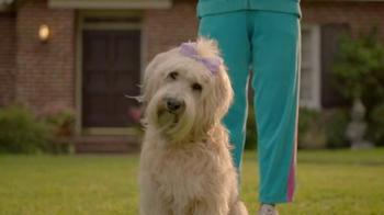 Subaru Impreza TV Spot, 'Make a Dog's Day' Song by Willie Nelson - Thumbnail 6