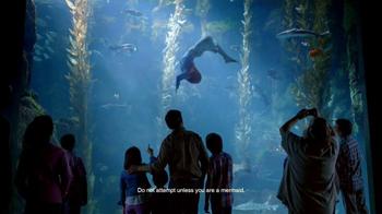 Disney Parks TV Spot, 'Disney Side: Under the Sea'