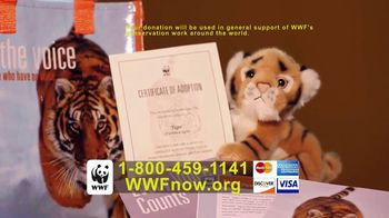 World Wildlife Fund TV Spot, 'Tigers' - Thumbnail 8
