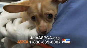 ASPCA TV Spot, 'Somewhere in America' - Thumbnail 6