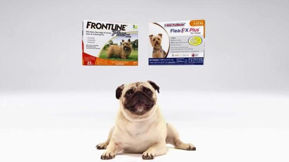 Pet Meds Dog Commercial