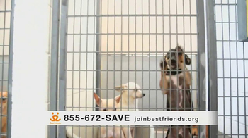Best Friends Animal Society TV Spot, 'Alfie' Featuring Lisa Edelstein - Thumbnail 5