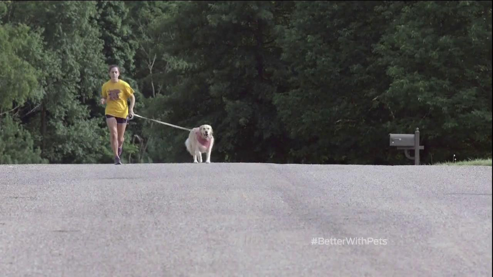 purina tv commercial sami and chloe running better