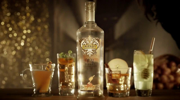 Smirnoff Wild Honey Vodka TV Spot, Song by Problem Child - Thumbnail 9