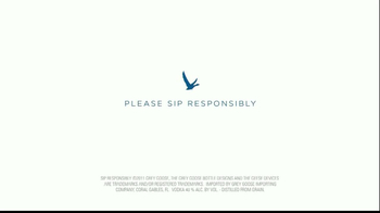 Grey Goose TV Spot, 'A Toast to Knowing'