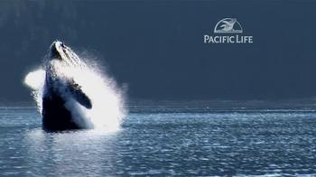 Pacific Life TV Spot, 'Whale' - Thumbnail 4
