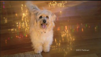 PetSmart Countdown to Christmas Sale TV Spot, 'Martha Stewart Pets' - Thumbnail 3