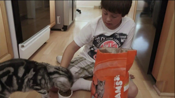 Iams TV Spot, 'Ziggy the Cat'