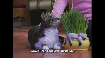 Chia Cat Grass Planter TV Spot