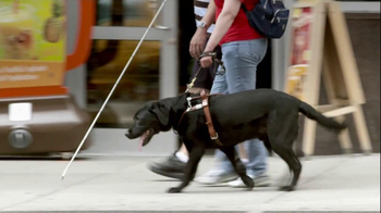 Purina ProPlan TV Spot, 'Great Dog' Song Tony Rogers - Thumbnail 8