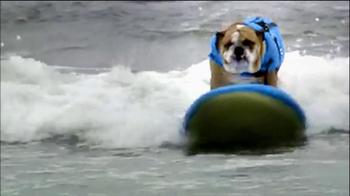Purina ProPlan TV Spot, 'Great Dog' Song Tony Rogers - Thumbnail 7