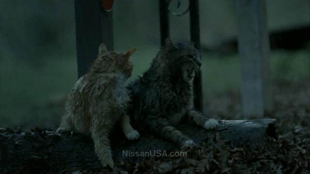 Nissan Commercial Song >> Nissan Pathfinder TV Commercial, 'The Ark' - iSpot.tv