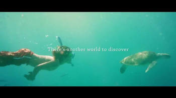 Princess Cruises 50th Anniversary Sale TV Spot, 'Turtles'