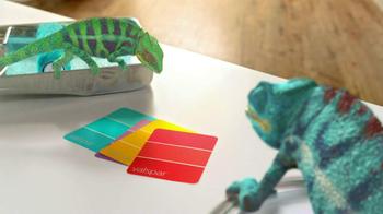 Valspar TV Spot, 'Chameleons' - Thumbnail 7