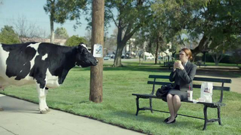 Chick-fil-A TV Spot, 'Missing Cow'