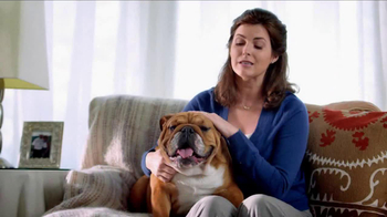 Blue Buffalo Blue Basics TV Spot, 'Rocky the Bulldog' - Thumbnail 2