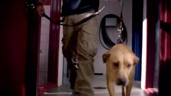 Pedigree TV Spot, 'Shelter Dogs' - Thumbnail 1