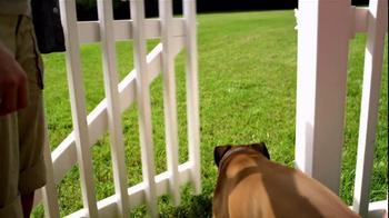 Pedigree TV Spot, 'Shelter Dogs' - Thumbnail 8