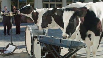 Chick-fil-A Grilled Chicken Nuggets TV Spot, 'Talented Cows' - Thumbnail 3