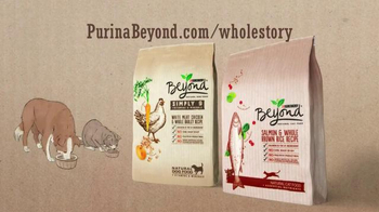 Purina Beyond TV Spot - Thumbnail 9