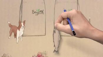 Purina Beyond TV Spot - Thumbnail 3