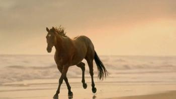 Strongbow TV Spot, 'Slow Motion Horse' - Thumbnail 5