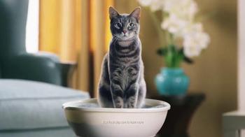 Fresh Step Extreme Lightweight Hovercat TV Spot, 'Hypnotic'