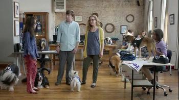 FedEx OneRate TV Spot, 'Pet Jerseys'