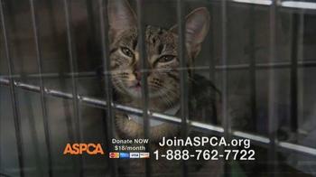 ASPCA TV Spot Featuring Eric McCormack - Thumbnail 8