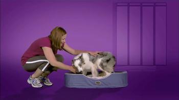 Milk-Bone TV Spot, 'Dog Expert Tip' Featuring Victoria Stilwell