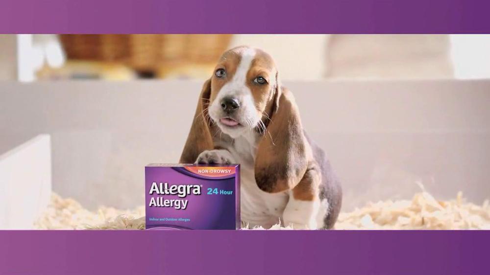 allegra tv commercial puppy   ispot tv