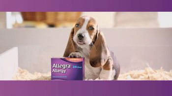 Allegra TV Spot, 'Puppy'