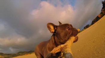 GoPro HERO3 TV Spot, 'Chicken the Dog' Song by Blackbird Blackbird