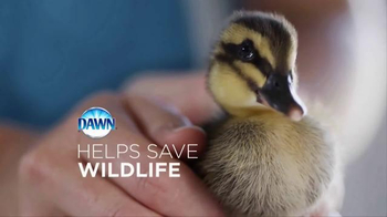 We All Love Wildlife thumbnail