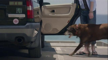 Iams TV Spot, 'A Boy and His Dog Duck' - Thumbnail 7