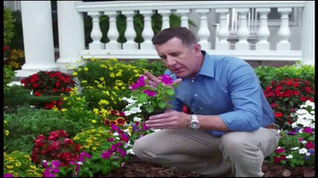 Spray-N-Grow TV Spot - 11 commercial airings