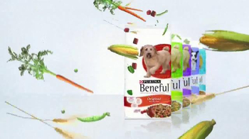 Purina Beneful TV Spot, 'Happy, Healthy Dog' - Thumbnail 10