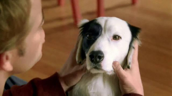 Purina Beneful TV Spot, 'Happy, Healthy Dog' - Thumbnail 7