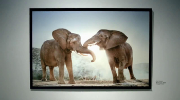 Intel Tablets TV Spot, 'Wildlife Photographer Paul Soulders' - Thumbnail 1