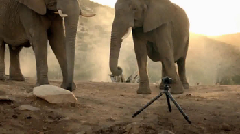 Intel Tablets TV Spot, 'Wildlife Photographer Paul Soulders' - Thumbnail 7