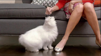 Fancy Feast TV Spot, 'Love Served Daily' Song by Meiko - Thumbnail 2