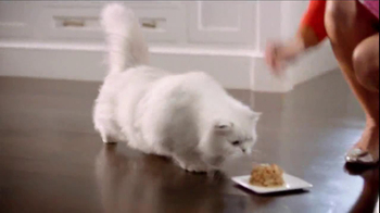 Fancy Feast TV Spot, 'Love Served Daily' Song by Meiko - Thumbnail 5