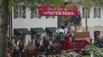 Budweiser Super Bowl 2014 TV Spot, 'A Hero's Welcome' Song by Skylar Grey - Thumbnail 7