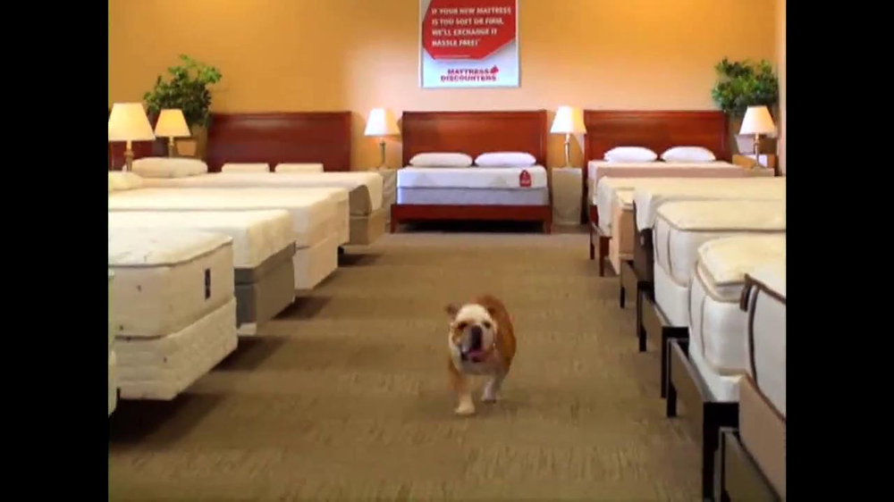 Mattress Discounters Presidents Day Sale TV Spot iSpot
