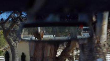Budweiser Super Bowl 2014 TV Spot, 'Puppy Love' - Thumbnail 8