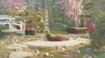 Sheba TV Spot, 'Cat Heaven' - 2164 commercial airings