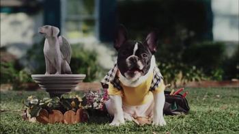CarMax Super Bowl 2014 TV Spot, 'Slow Bark' Puppy Version - Thumbnail 10