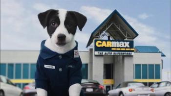 CarMax Super Bowl 2014 TV Spot, 'Slow Bark' Puppy Version - Thumbnail 2