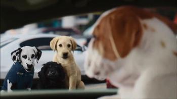 CarMax Super Bowl 2014 TV Spot, 'Slow Bark' Puppy Version - Thumbnail 4